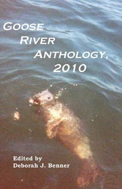 Goose River Press Anthology 2010 in paperback and hardcover