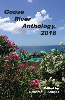Goose River Press Anthology 2018 in paperback and hardcover